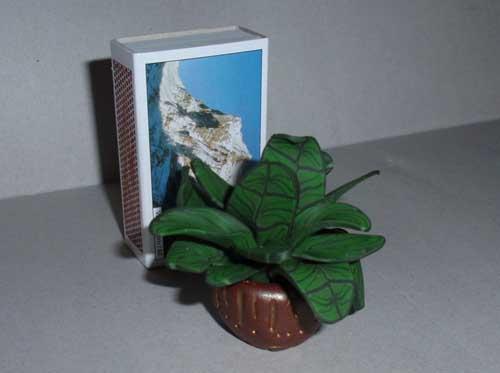 Anleitung Minitopfpflanze